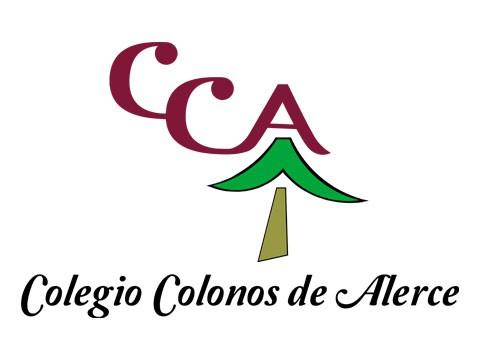 Colegio Colonos - WDesign - Diseño Web Osorno