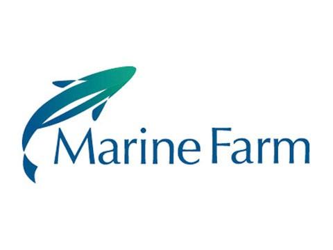 Marinefarm - WDesign - Diseño Web Osorno
