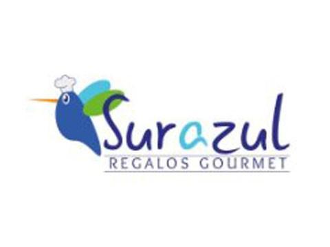 Regalo Sur Azul - WDesign - Diseño Web Osorno