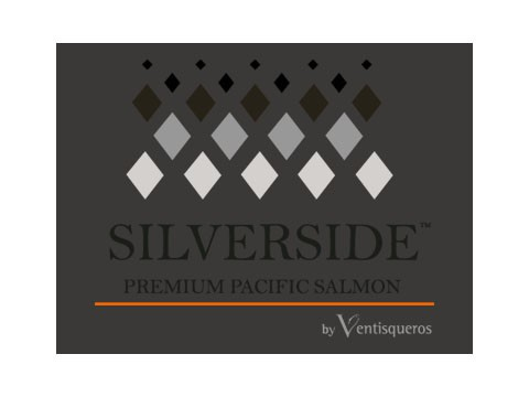Silver Side - WDesign - Diseño Web Osorno