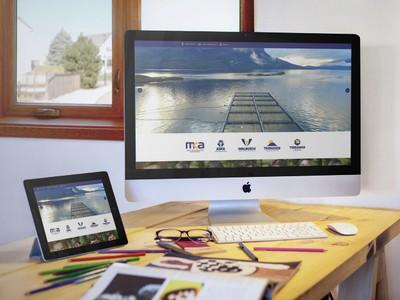 Walbusch - Diseño Web Osorno